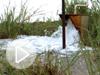 nsf-oil-flooded-fields-vin.jpg