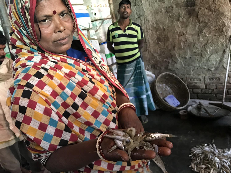 """Poonam Devi, vânzătoare de pește de pe fluviul gange, din Bhagalpur. """"N-are cum să ni se mai întoarcă peștele. Nici nu ne mai gândim la asta."""" Foto: PAUL SALOPEK"""